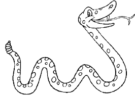 Un Serpente Allegro Disegni Da Stampare Per Bambini Disegni Da