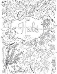 magic herbs coloring page