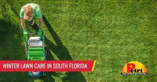 winter lawn care in south florida