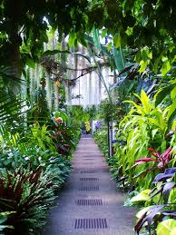 conservatory at longwood gardens by amy anderson