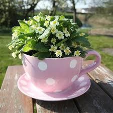 Inspiring Teacup Flower Pot 76 About Remodel Simple Design Decor with Teacup  Flower Pot 7034