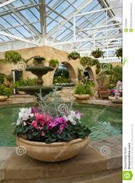 Indoor Garden Cyclamen Pots In Indoor Garden Royalty Free Stock Image Image