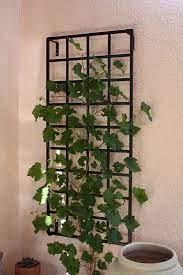 small modern wall trellis made of