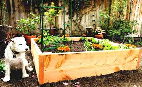 Small Picture Easy Raised Garden Bed Plans Garden Trellis Design For My Raised