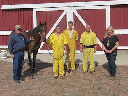 inmates t breds taught patience work ethic pictured from left c reid mclellan phd executive director the elite