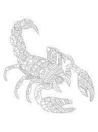scorpion coloring scorpion coloring vector for s stock vector image free scorpion coloring pages scorpion coloring