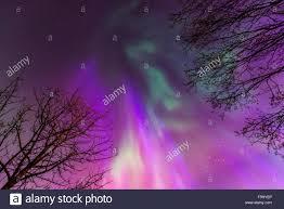 Purple Pink Northern Lights Green Purple And Pink Northern Lights Overhead Anchorage