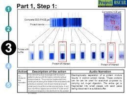 Liquid - Spectrometry Ppt Download Chromatography-mass