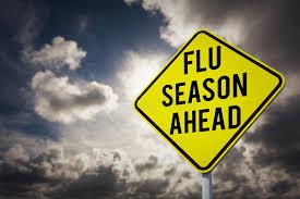 Image result for flu season