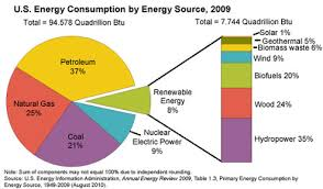 Renewable And Non Renewable Energy First Trimester