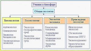 Структура экологии Реферат Структура экологии методы экологических исследований