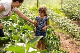 make gardening a family hobby