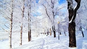 winter mac backgrounds winter christmas mac wallpaper download free mac