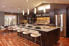 kitchen ideas dark cabinets modern. Kitchen Ideas With Dark Cabinets Best Modern