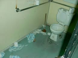 colleges with coed bathrooms. Brilliant Colleges How To Cope With CoEd Bathrooms Colleges With Coed H