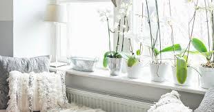 Fensterbänke Dekorieren 11 Style Tricks Und Ideen Das Haus