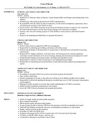 Childcare Resume Child Care Director Resume Samples Velvet Jobs 27