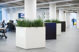 Biophilic Design In The Workplace The Benefits Of Biophilic Design In The Workplace Planteria