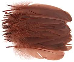 Prettyia 50 Pieces Natural Goose Feather for Art and ... - Amazon.com