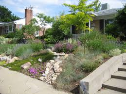 Drought Tolerant Front Yard Landscape Design Considering Drought Tolerant Landscaping For Cheap And