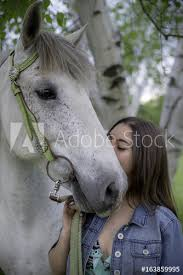 white horse face side. Contemporary Face Vertical Photo Of Dappled White Horse Wearing Green Bridle With Girl  Kissing Side Face On White Horse Face Side E