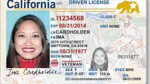 Bee Driver Bill One Take To Sacramento Than Senate Photo License Allow 1407 Dmv The Drivers More Will