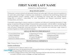 Real Estate Agent Resume Examples Resume
