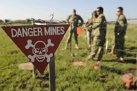 Kết quả hình ảnh cho Preventing and removing landmines - a humanitarian action