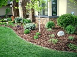 pine bark nuggets vs mulch home depot red
