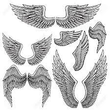 白い背景に分離されてオープン ポジションの別の図形の白黒の鳥の翼のセット