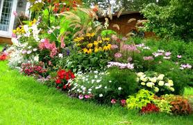 Small Picture Small Front Yard Landscaping Ideas To Define Your Curb Appeal