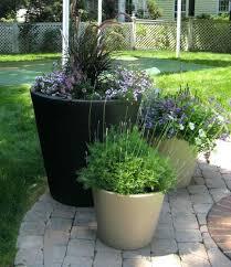 outdoor garden ideas. Flower Pots Ideas For Creative Rhskipsetinfo Fairy Garden In A Potrhbigdiyideascom Unique Outdoor U