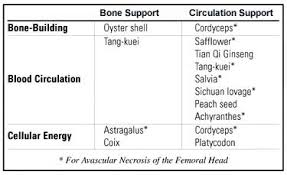Circulation Chart For Fracture Natural Bone Building Synergy Nutrition Review
