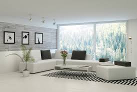 contemporary white living room furniture with zebra rugs black pillow square coffee table with storage flower plants vase frame lighting glass windows
