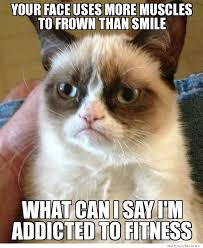 Grumpy Cat On Frowning | WeKnowMemes via Relatably.com