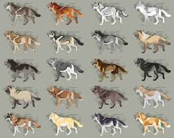 Realistic Wolf Designs Semi Realistic Wolf Adopts Set 27 Open By Skythearts