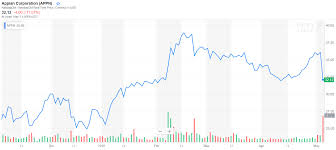 Appian The Long Term Growth Story Is Intact Appian