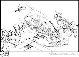Small Picture dove coloring pages printable Archives Best Coloring Page