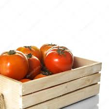 fresh tomatoes in wooden boxes stock photo