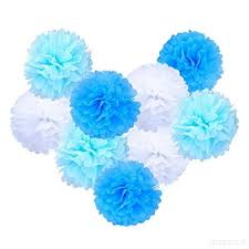 Tissue Paper Pom Poms Flower Balls Teni Tissue Paper Pom Poms Hanging Flower Balls For Wedding Party Decorations Pack Of 9 6e6j2rtt9