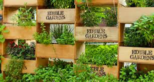 Small Picture 50 best Edible Home Garden Designs Multifunctional Edible