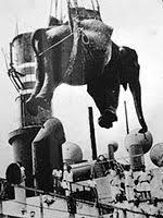 「1949年 - インディラが上野動物園に到着。」の画像検索結果