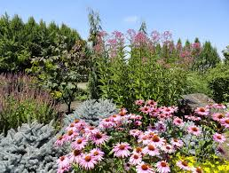 so we must have a few pretty amazing botanical gardens right well we do have several remarkable specialty gardens the chinese garden the japanese