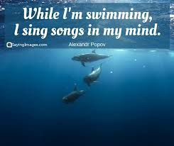 Swimming Quotes Cool 48 Fun And Motivational Swimming Quotes SayingImages