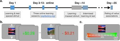 Spaced Online Reinforcement Learning Over Time Spaced Versus Massed