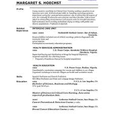 Resume Professional Profileresume Professional Profile Example