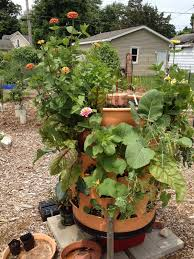 vertical gardening ideas with images