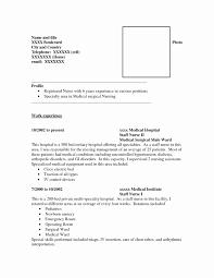 Sample Combination Resume Format New Hybrid Resume Samples Bination