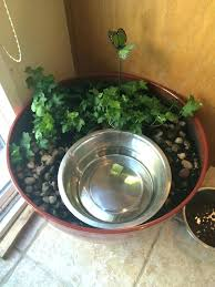 outdoor automatic dog water bowl designs