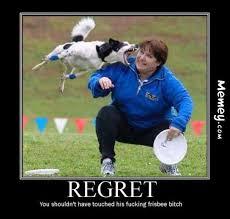Funny Frisbee Quotes. QuotesGram via Relatably.com